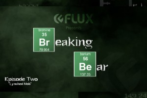Flux Breaking Bear